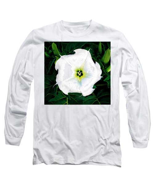 Long Sleeve T-Shirt featuring the photograph Jimson Weed #1 by Lou Novick