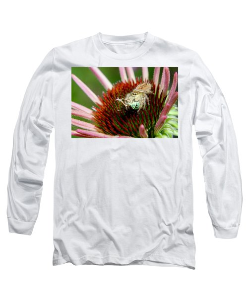 Jumping Spider With Green Weevil Snack Long Sleeve T-Shirt