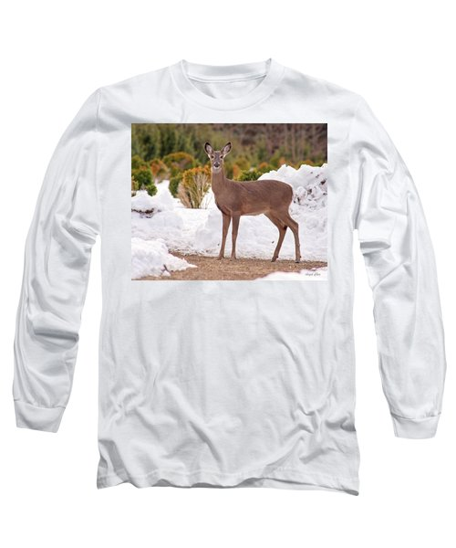 Long Sleeve T-Shirt featuring the photograph Junior by Angel Cher