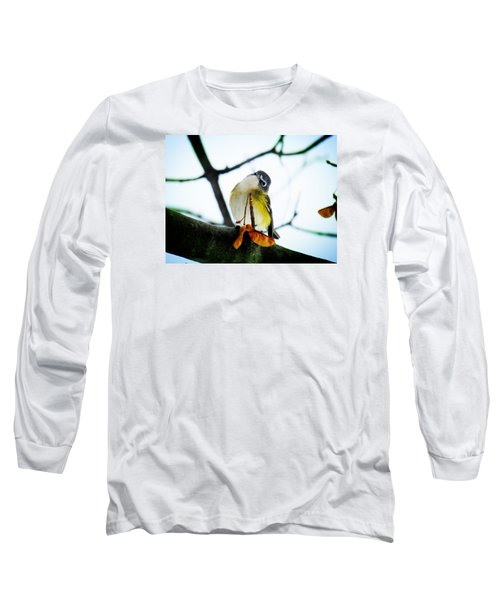 Just Curious Long Sleeve T-Shirt by Zinvolle Art