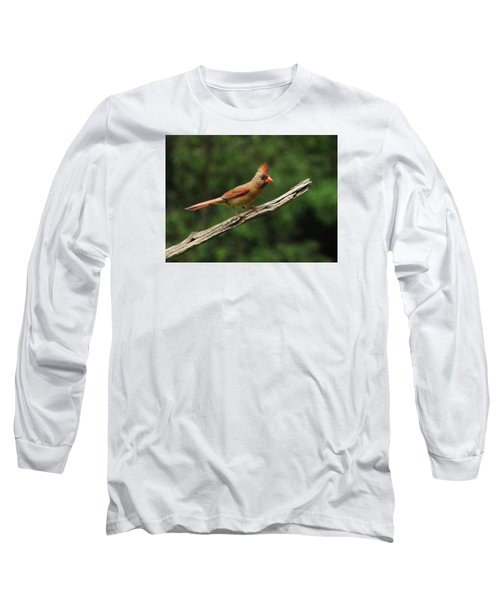 Juvenile Female Cardinal Long Sleeve T-Shirt