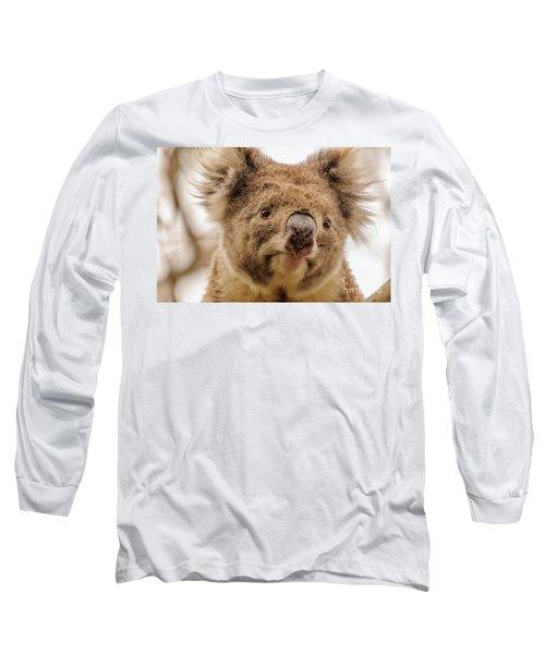Koala 4 Long Sleeve T-Shirt by Werner Padarin
