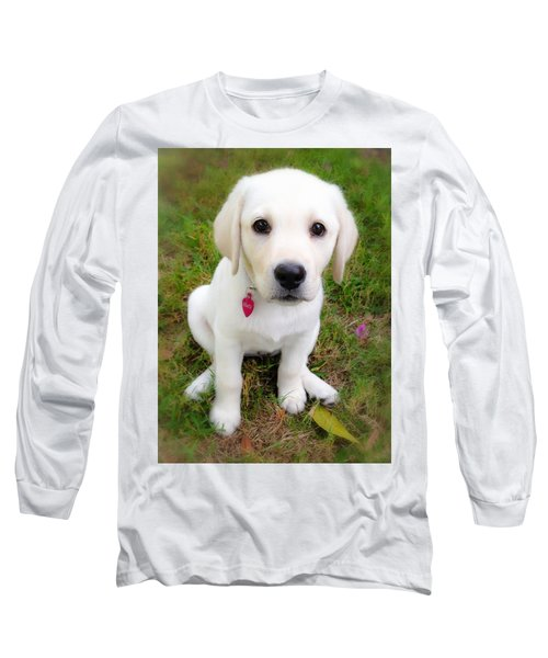 Long Sleeve T-Shirt featuring the photograph Lab Puppy by Stephen Anderson