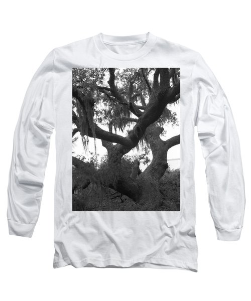 Lands End Talking Tree Long Sleeve T-Shirt