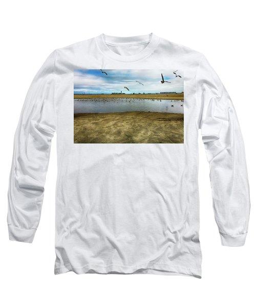 Lb Seagull Pond Long Sleeve T-Shirt by Joseph Hollingsworth