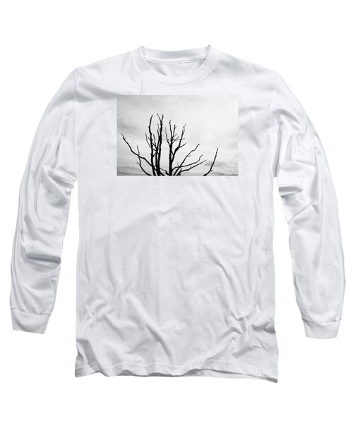 Leafless Tree Long Sleeve T-Shirt