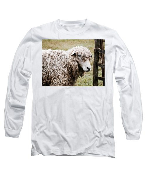 Leicester Longwool Long Sleeve T-Shirt