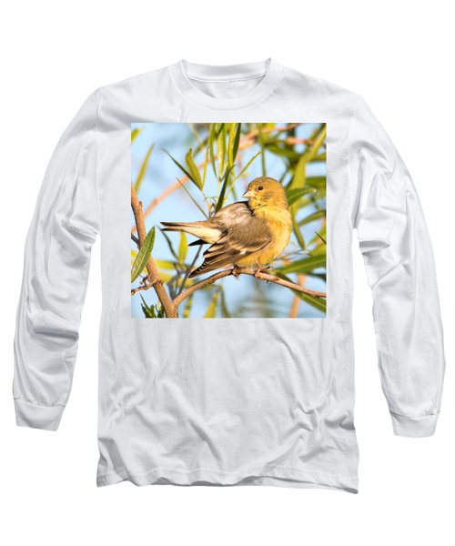 Long Sleeve T-Shirt featuring the photograph Lesser Goldfinch by Dan McManus