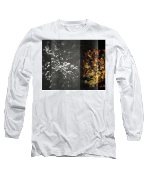 Let The Wind Go Long Sleeve T-Shirt