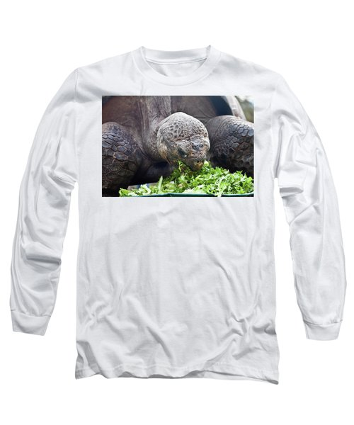 Long Sleeve T-Shirt featuring the photograph Lettuce Makes You Strong by Miroslava Jurcik