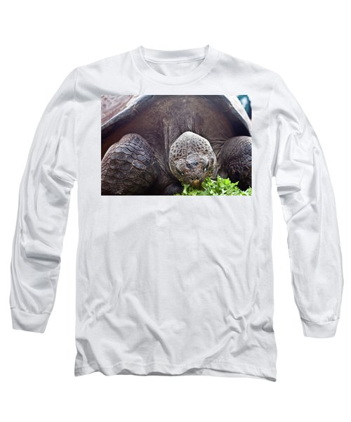 Long Sleeve T-Shirt featuring the photograph Life Begins At 60 For Vegetarian by Miroslava Jurcik