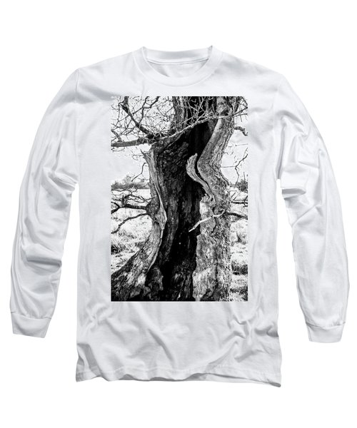 Lightning Tree Long Sleeve T-Shirt