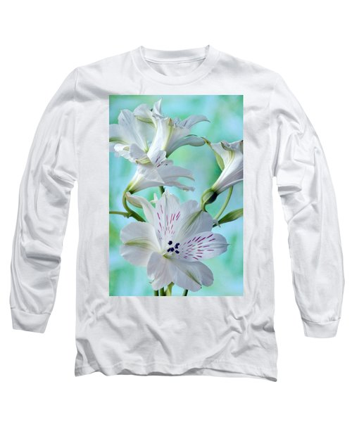Lily Of The Incas Long Sleeve T-Shirt by Terence Davis