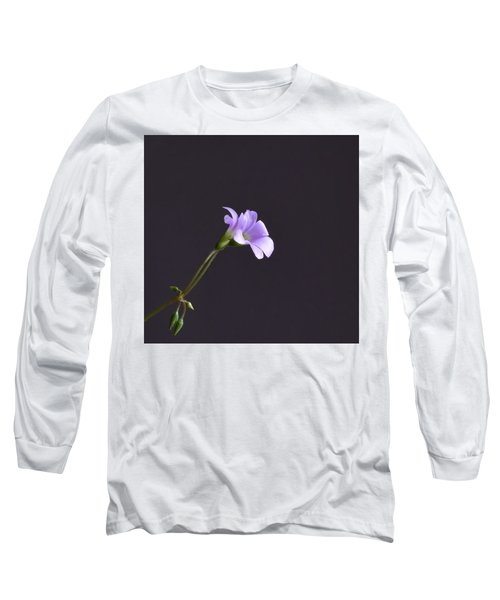 Little Lavender Flowers Long Sleeve T-Shirt by Kathy Eickenberg