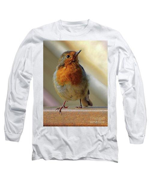 Little Robin Redbreast Long Sleeve T-Shirt