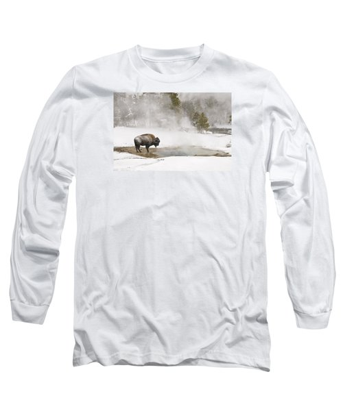 Long Sleeve T-Shirt featuring the photograph Bison Keeping Warm by Gary Lengyel