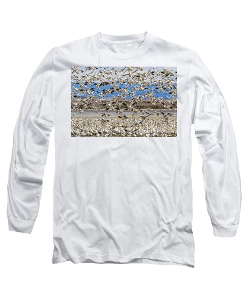 Looking For A Place To Land Long Sleeve T-Shirt