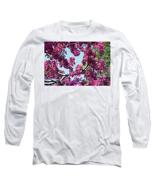 Looking Skyward Long Sleeve T-Shirt