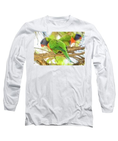 Lorrikeets 02 Long Sleeve T-Shirt