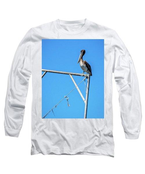 Louisiana's State Bird Long Sleeve T-Shirt