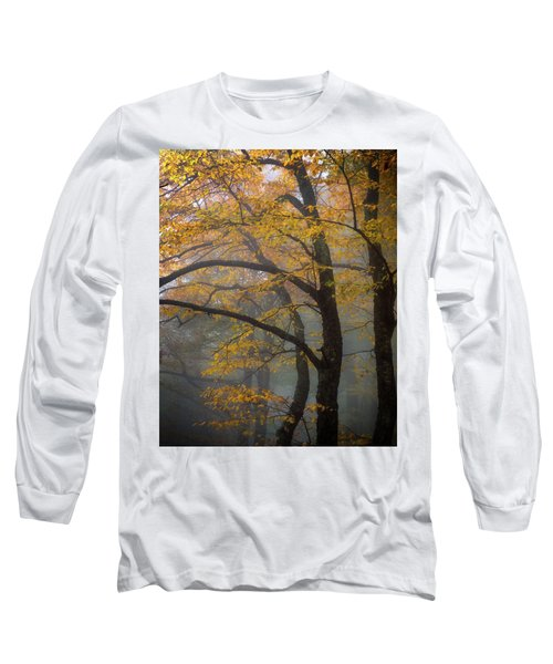 Magical Forest Blue Ridge Parkway Long Sleeve T-Shirt