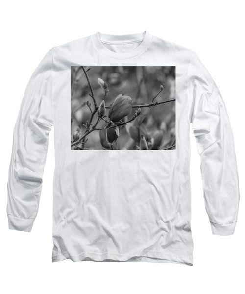 Magnolia Bw Blooms Buds Branches Long Sleeve T-Shirt