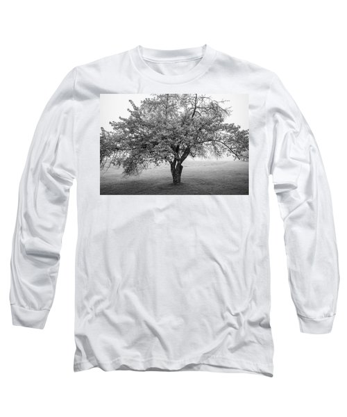 Long Sleeve T-Shirt featuring the photograph Maine Apple Tree In Fog by Ranjay Mitra