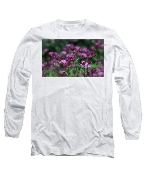 Majestic Magenta Long Sleeve T-Shirt