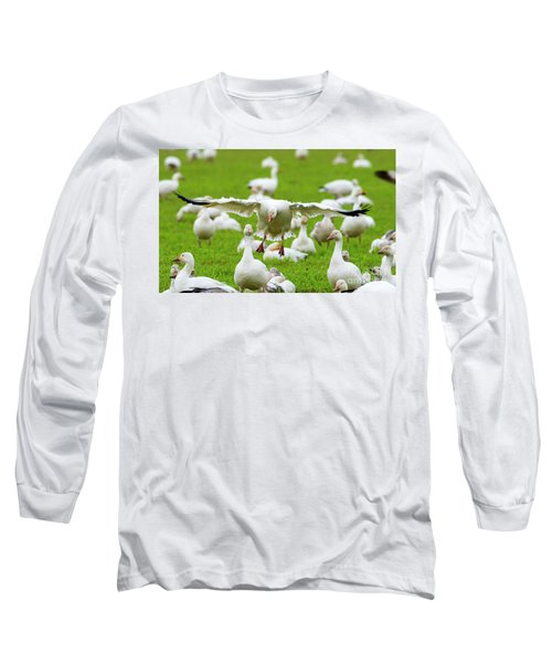 Long Sleeve T-Shirt featuring the photograph Make Room by Mike Dawson