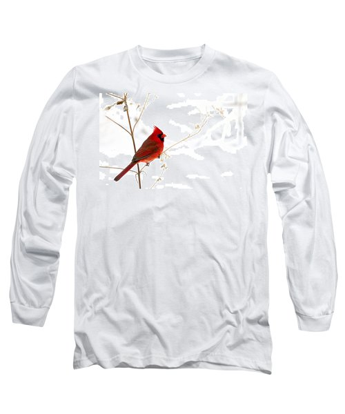 Male Cardinal Posing In The Snow Long Sleeve T-Shirt