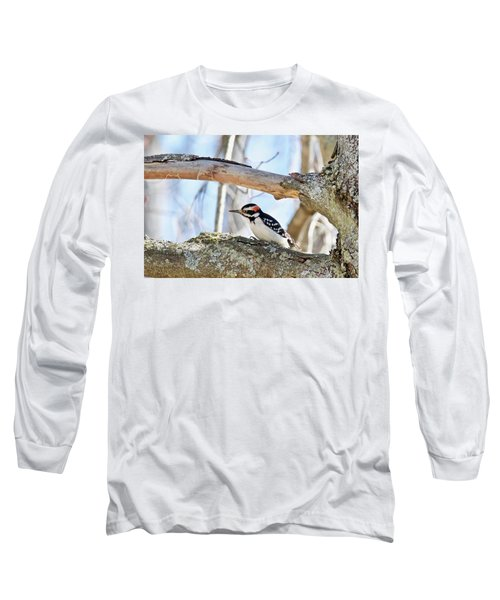 Long Sleeve T-Shirt featuring the photograph Male Downey Woodpecker 1112 by Michael Peychich