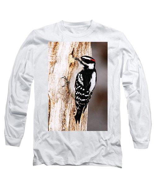 Male Hairy Woodpecker Long Sleeve T-Shirt