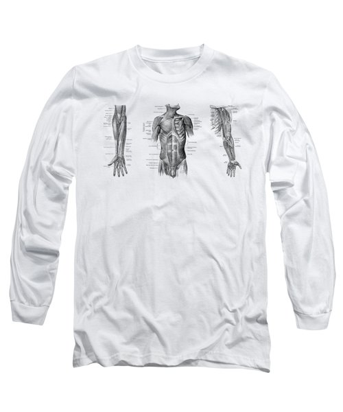 Male Upper Body Muscular System - Multi-view - Vintage Anatomy Long Sleeve T-Shirt