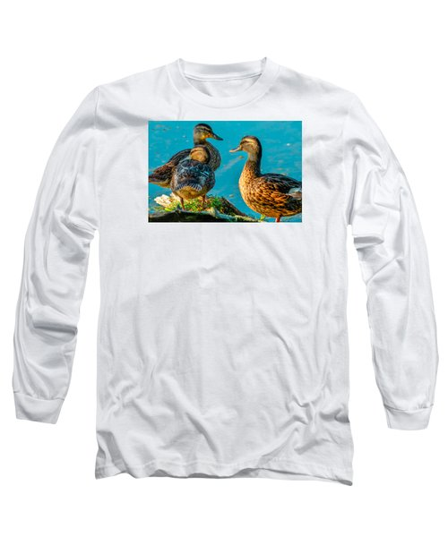 Long Sleeve T-Shirt featuring the photograph Mallard Ducks 2 by Brian Stevens