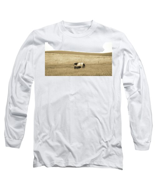 Long Sleeve T-Shirt featuring the photograph Mare And Foal  by Dawn Romine