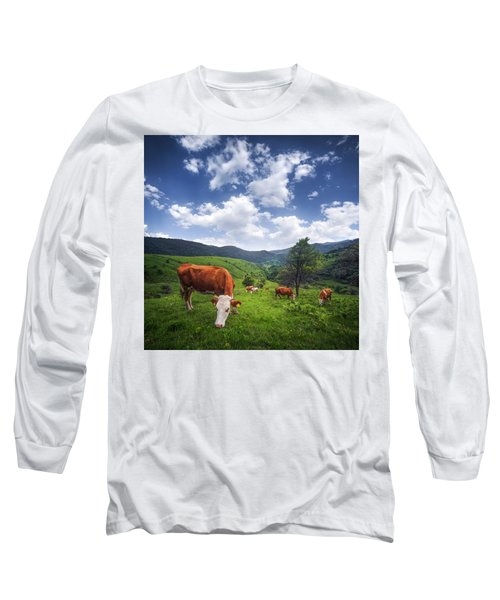 Long Sleeve T-Shirt featuring the photograph Milka by Bess Hamiti