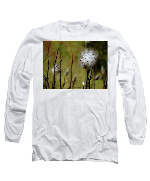 Milkweed In A Field Long Sleeve T-Shirt