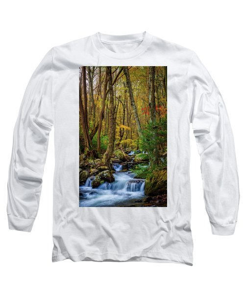 Mill Creek In Fall #1 Long Sleeve T-Shirt