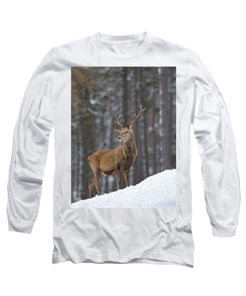 Monarch Of The Woods Long Sleeve T-Shirt