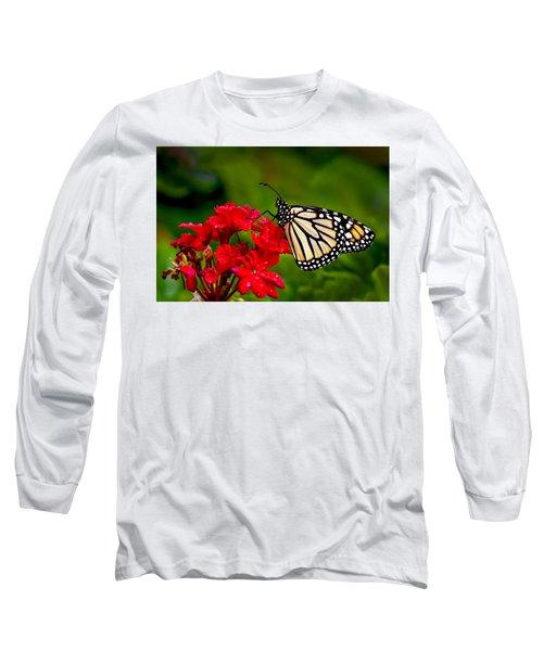 Monarh Butterfly Long Sleeve T-Shirt