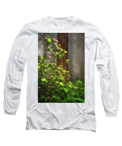 Moody Forest  Long Sleeve T-Shirt