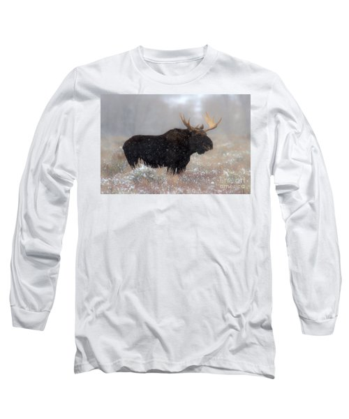Long Sleeve T-Shirt featuring the photograph Moose Winter Silhouette by Adam Jewell