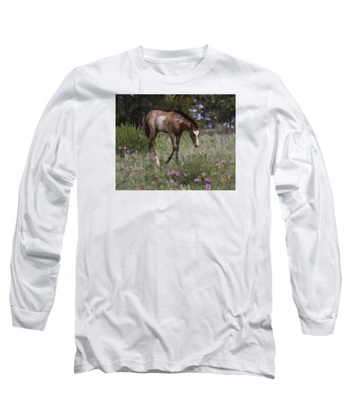 Morning Glory Long Sleeve T-Shirt by Elizabeth Eldridge