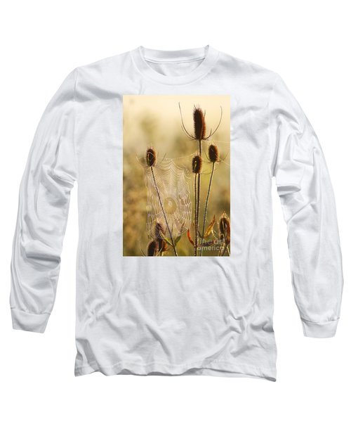 Morning Spider Web Long Sleeve T-Shirt