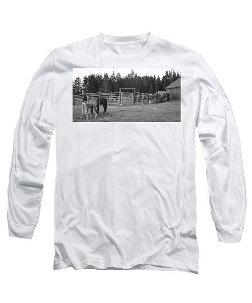 Mountain Corrals Long Sleeve T-Shirt