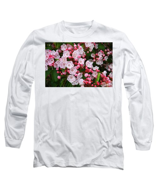 Mountain Laurels Long Sleeve T-Shirt