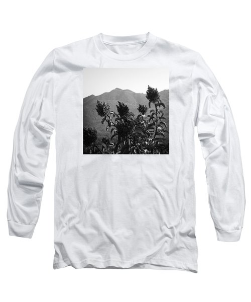 Mountains And Vegetation Long Sleeve T-Shirt