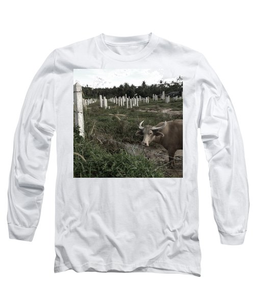 Mourning In The Palm-tree Graveyard Long Sleeve T-Shirt