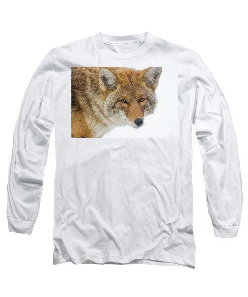 Mr. Coyote Long Sleeve T-Shirt