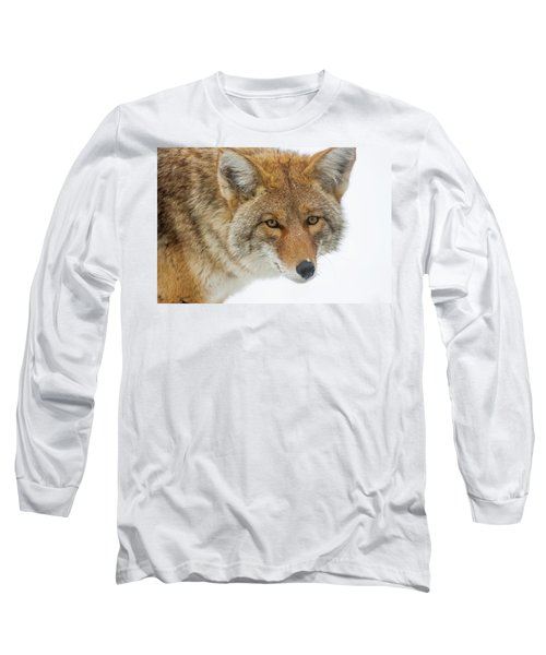 Mr. Coyote Long Sleeve T-Shirt